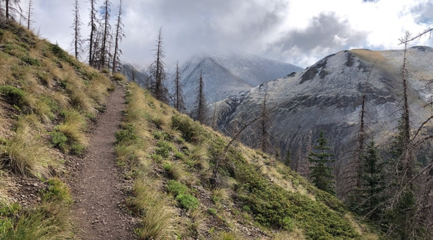 Hike Up through Valley