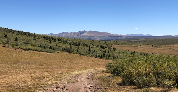Old ATV roads after Spring Creek Pass