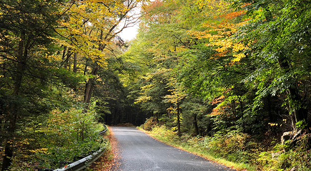 Road Walk After Amherst on the NET