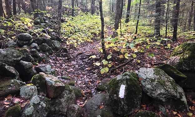 net crossing stone wall