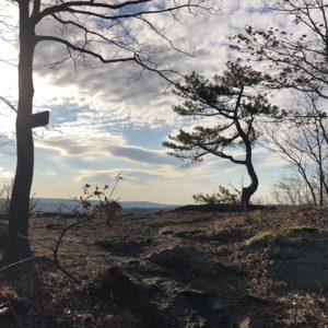 Ives Trail - Varied Terrain with History! | Average Hiker