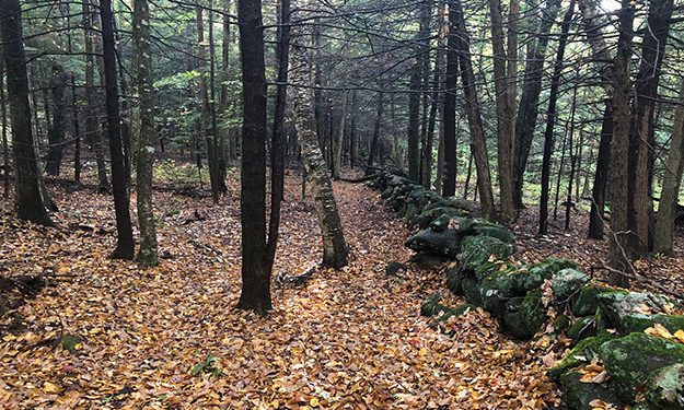Traditional New England Stone Wall