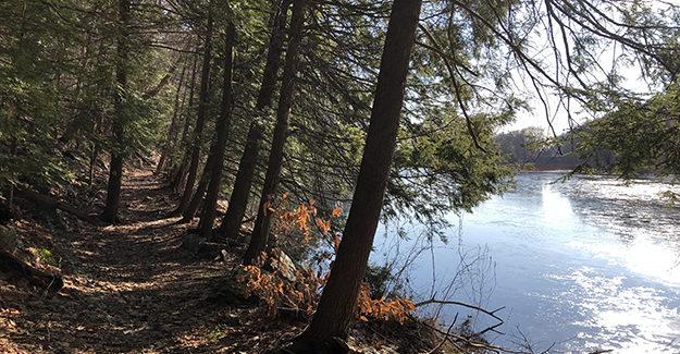 Sugar Hollow Pond Near Route 7