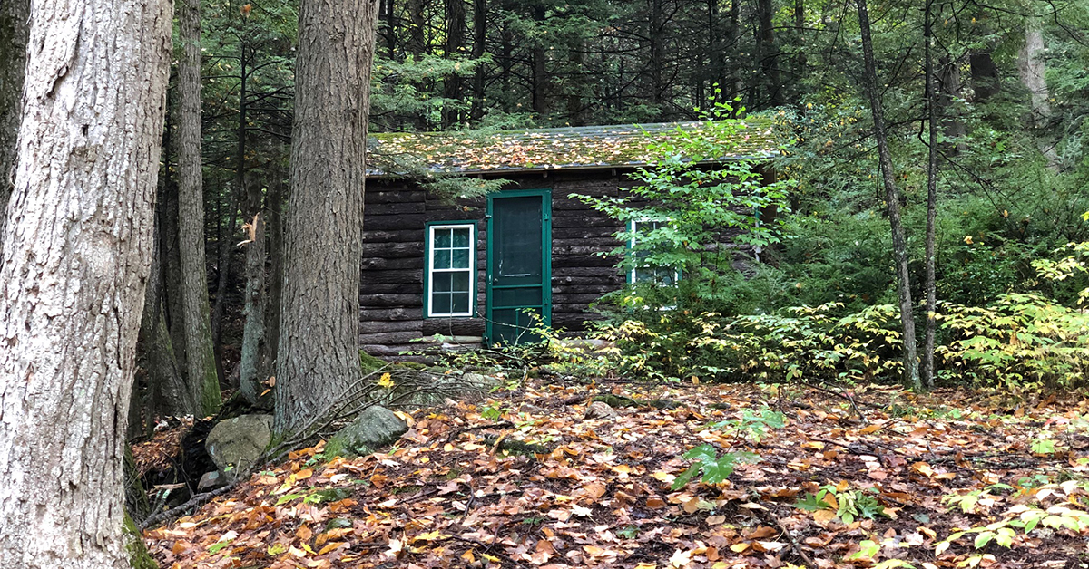 Tiny Cabin on the New England Trail in Massachusets