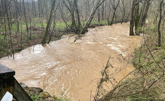 flooded stream on the bmt