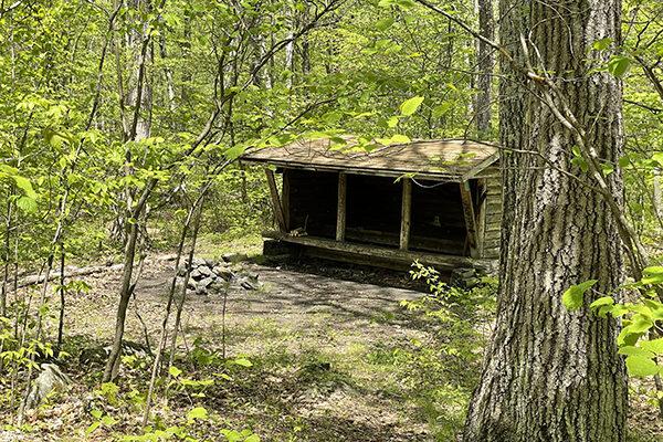 Pine Hill Shelter