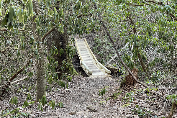 New bridge on stream crossing