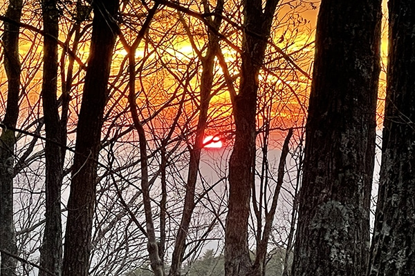 Beautiful red and orange sunset on the Benton Mackaye Trail