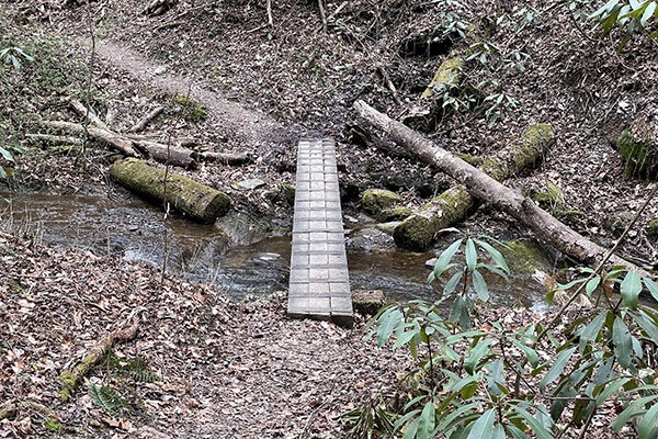 Small footbridge while hiking on the trail.