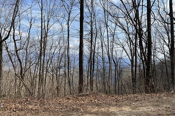 Ridge views on the Benton Mackaye Trail